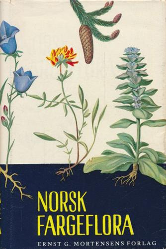 Norsk fargeflora.