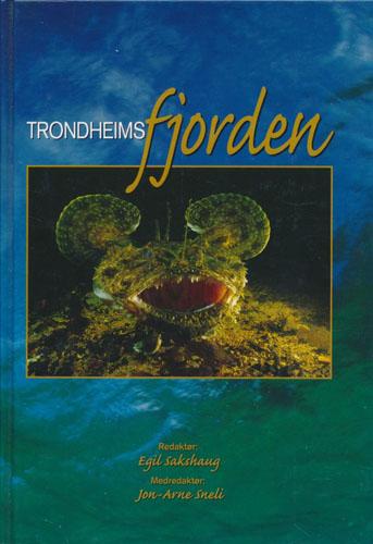 Trondheimsfjorden.