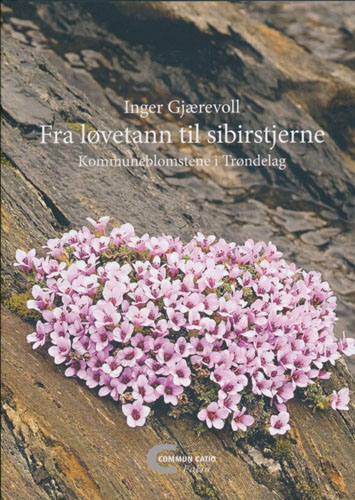Fra løvetann til sibirstjerne. Kommuneblomstene i Trøndelag.