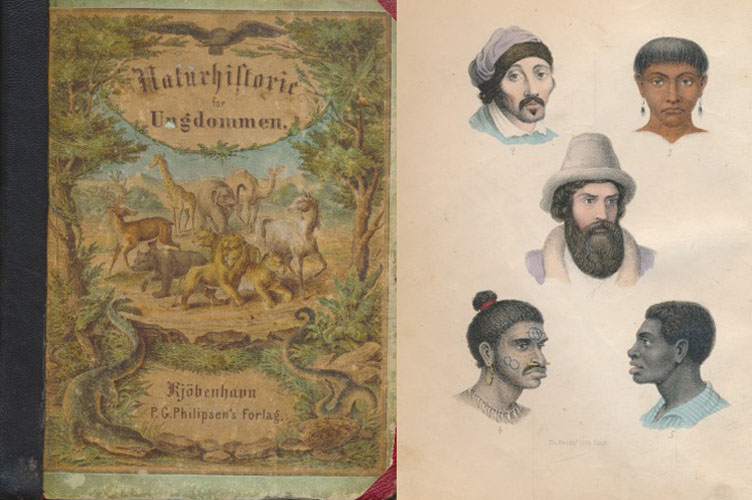 """Naturhistorie for ungdommen. Nærmest efter F. Martin's """"Naturgeschichte für die Jugend"""". Med 262 illuminerede Afbildninger."""