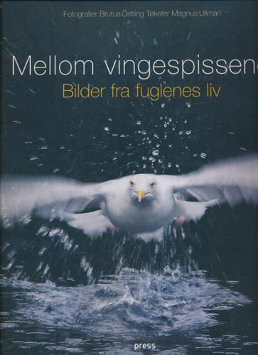 Mellom vingespissene. Bilder fra fuglenes liv.