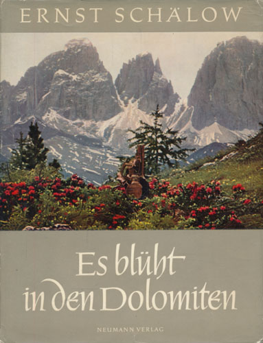 Es blüht in den Dolomiten. Mit Federzeichnungen von Kurt Schulze.